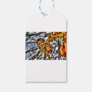 黄褐色のFROGMOUTHのフクロウのオーストラリアの芸術の効果 ギフトタグ