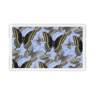 黒いアゲハチョウの蝶 アクリルトレー
