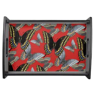 黒いアゲハチョウの蝶 トレー