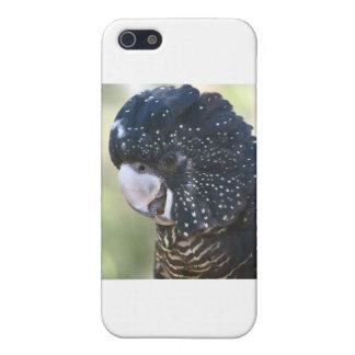 黒いオウム iPhone 5 ケース