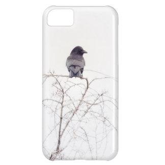 黒いコクマルガラスの鳥の眺望 iPhone5Cケース