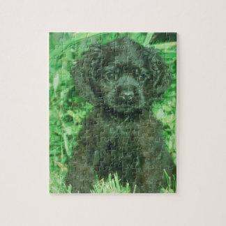 黒いコッカースパニエルの小犬のパズル ジグソーパズル
