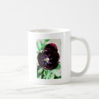 黒いチューリップのマクロ コーヒーマグカップ