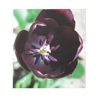 黒いチューリップのマクロ ノートパッド