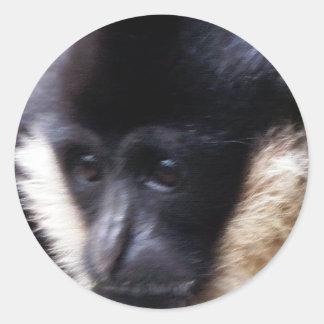 黒いテナガザルのサルの顔のクローズアップのパステル ラウンドシール