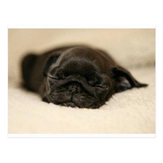 黒いパグの子犬の睡眠 ポストカード