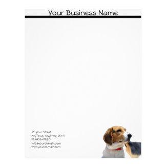 黒いブラウンおよび白いビーグル犬犬レターヘッド レターヘッド