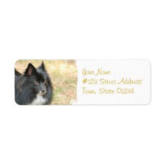 黒いポメラニア犬の郵送物のラベル ラベル