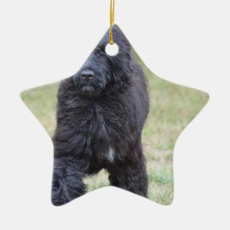 黒いポルトガル水犬 セラミックオーナメント