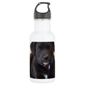 黒いラブラドル・レトリーバー犬の子犬 ウォーターボトル