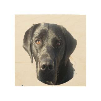 黒いラブラドール犬のポートレート ウッドウォールアート