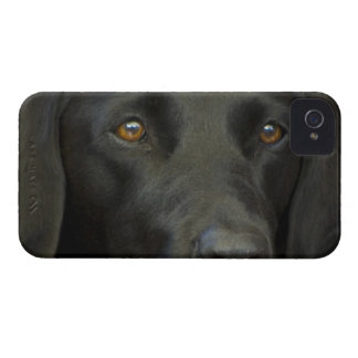黒いラブラドール犬 Case-Mate iPhone 4 ケース