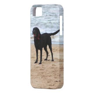 黒いラブラドール犬 iPhone SE/5/5s ケース