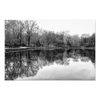 黒い及び白のセントラル・パークの美しい景色 フォトプリント