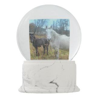 黒い子馬の白馬 スノーグローブ