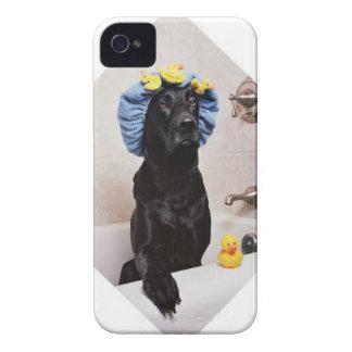 黒い実験室のラブラドール犬のおもしろいなBathの時間 Case-Mate iPhone 4 ケース