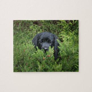 黒い実験室の子犬 ジグソーパズル