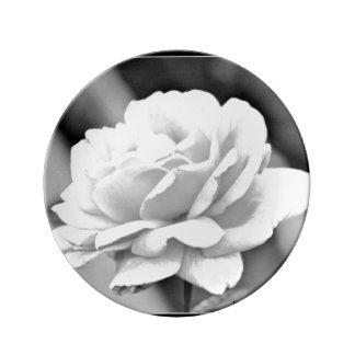 黒い磁器皿の白いバラ 磁器プレート