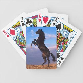 黒い種馬 バイスクルトランプ