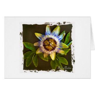 黒い背景が付いている花 カード