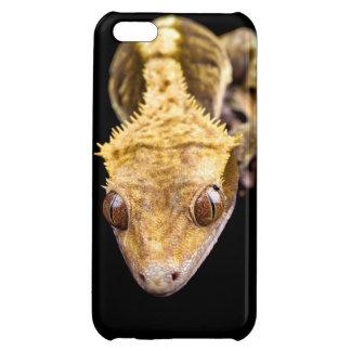 黒い背景で近いハ虫類 iPhone 5C CASE