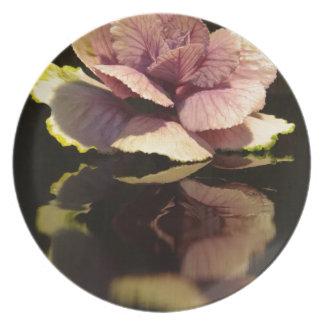 黒い背景のエレガントなキャベツ植物 プレート