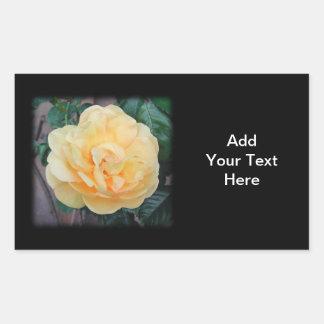 黒い背景の黄色バラ、 長方形シール