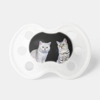 黒い背景の2匹のイギリスの短い髪猫 おしゃぶり
