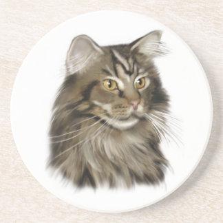黒い虎猫のメインのあらいぐま猫 コースター