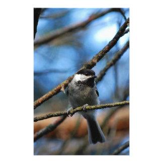 黒おおわれた《鳥》アメリカゴガラは狭いTwのまわりでつま先を包みます 便箋