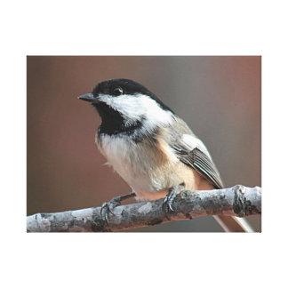 黒おおわれた《鳥》アメリカゴガラ キャンバスプリント