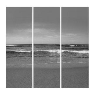 黒く及び白いビーチ トリプティカ