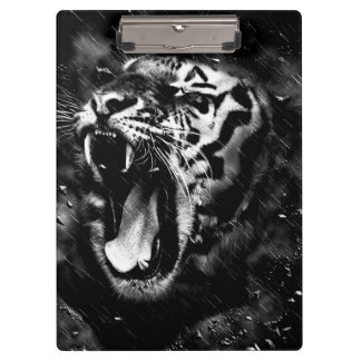 黒く及び白く美しいトラの頭部の野性生物 クリップボード
