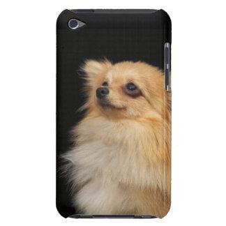 黒で調べるポメラニア犬 Case-Mate iPod TOUCH ケース