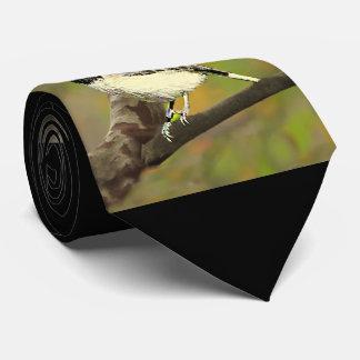黒によっておおわれる《鳥》アメリカゴガラ(メインおよびマサチューセッツ) .j カスタムタイ