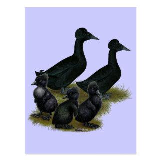 黒によって頂点に達されるアヒル家族 ポストカード