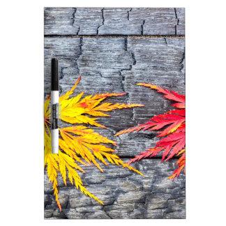 黒の黄色およびアメリカハナノキの葉は木を燃やしました ホワイトボード