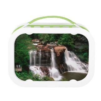 黒水熱の滝、景色ウェストヴァージニア ランチボックス