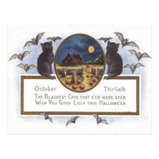 黒猫のこうもりの農場のカボチャ三角波の満月 ポストカード