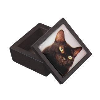 黒猫のギフト用の箱 ギフトボックス
