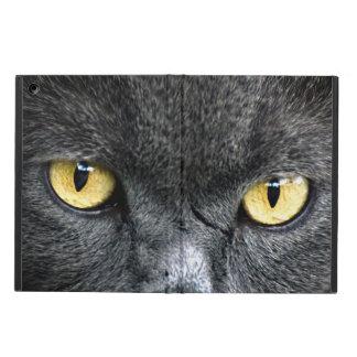 黒猫の目 iPad AIRケース