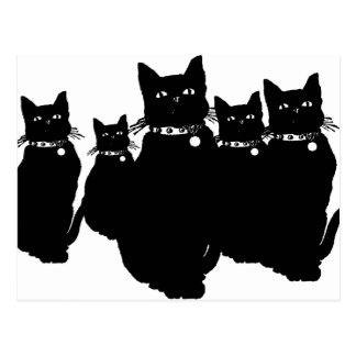 黒猫を用心して下さい ポストカード