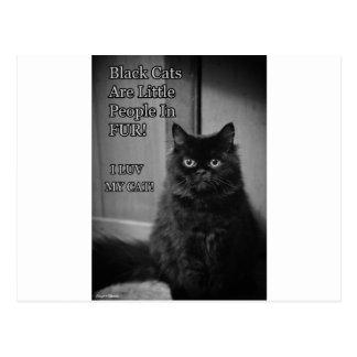 黒猫愛 ポストカード