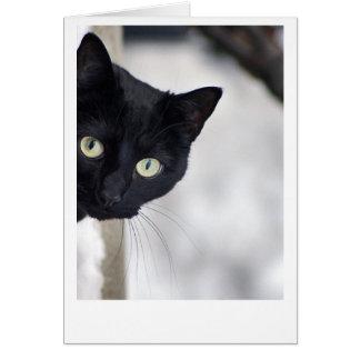 黒猫 カード