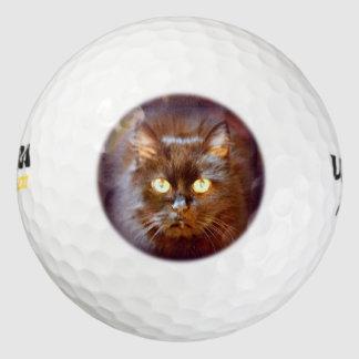黒猫 ゴルフボール