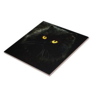 黒猫 タイル