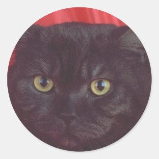 黒猫-赤 ラウンドシール