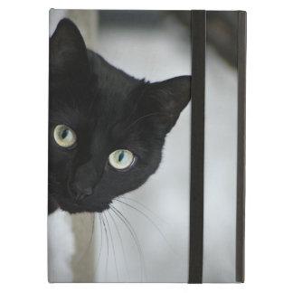 黒猫 iPad AIRケース