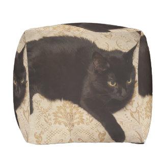 黒猫Roxie アウトドアプーフ
