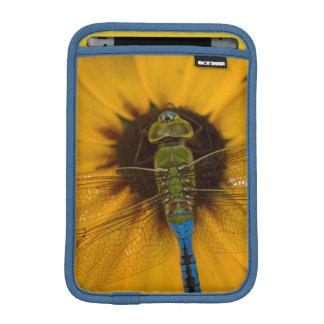 黒目のスーザンのDarnerの共通の緑の男性 iPad Miniスリーブ